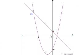 【中考】数学抛物线模型专题