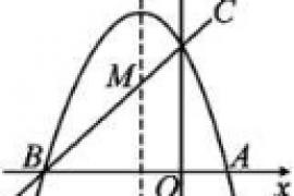 【九年级上】二次函数与特殊几何图形的探究问题